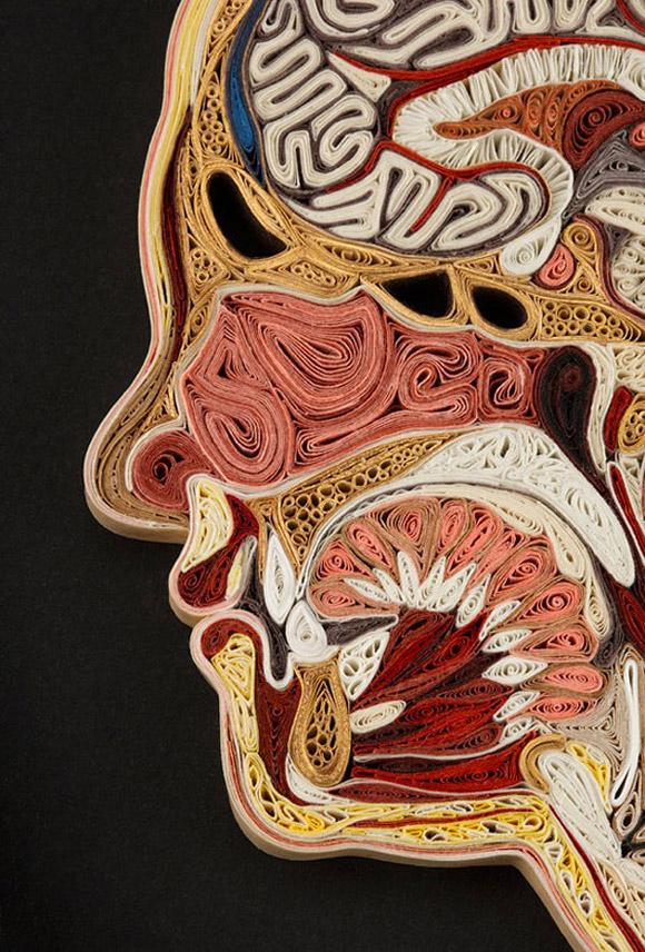 KunstKulturLifestyle » Blog Archiv » Anatomische Kunst aus ...